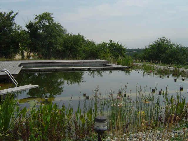piscine naturelle ecologie pratique. Black Bedroom Furniture Sets. Home Design Ideas